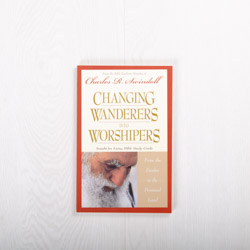 Changing Wanderers Into Worshipers: From the Exodus to the Promised Land, study guide
