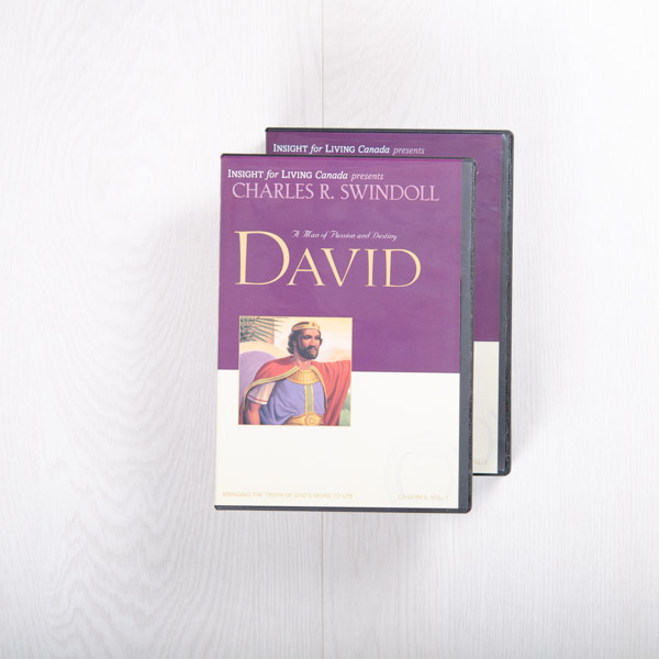 David: A Man of Passion and Destiny, message series
