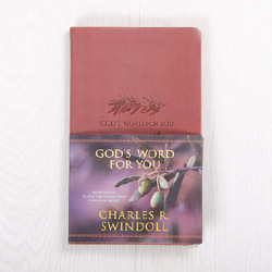 God's Word for You: An Invitation to Find the Nourishment Your Soul Needs, devotional by Charles R. Swindoll