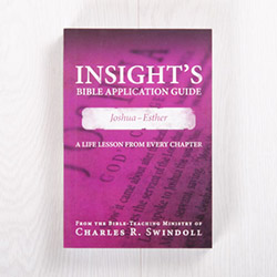Insight's Bible Application Guide: Joshua-Esther—A Life Lesson from Every Chapter, paperback by Insight for Living