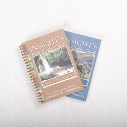 Insight's Bible Reading Guides: Old and New Testament, set of two paperbacks by Insight for Living