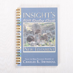 Insight's Bible Reading Guide: New Testament, paperback devotional by Insight for Living