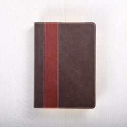 The Swindoll Study Bible NLT, LeatherLike Brown/Tan TuTone