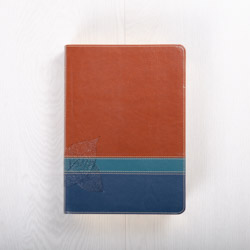 The Swindoll Study Bible NLT, LeatherLike Brown/Teal TuTone