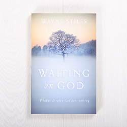 Waiting on God: What to do when God does nothing, paperback by Wayne Stiles